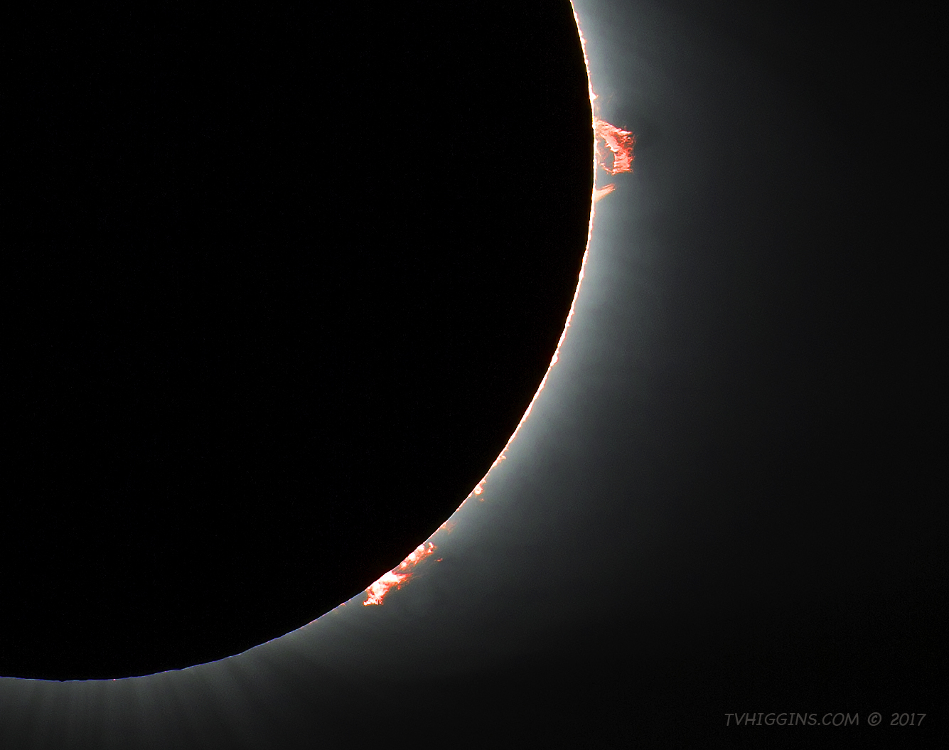 Solar Prominences of Eclipse 2017